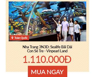 Tour Nha Trang 3N3Đ: Sealife Bãi Dài - Con Sẻ Tre - Vinpearl Land
